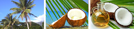 Cocos herbals