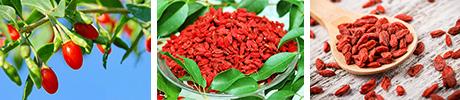 Goji superfood herbals.lv